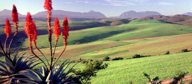 Overview of the Overberg, www.overberg-info.co.za